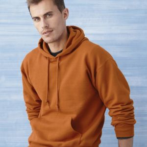 DryBlend Hooded Sweatshirt Thumbnail